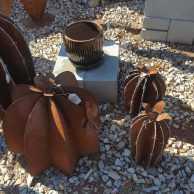 Rusted Barrel Cactus