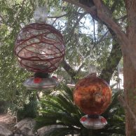 Dew Drop Hummingbird Feeder