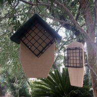 Double Tail Prop and Cedar Double Cake Suet Feeders