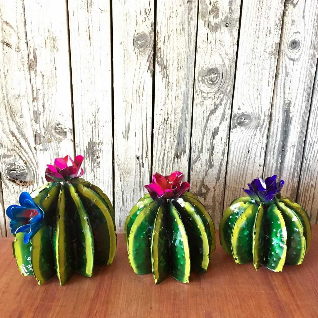 Painted Barrel Cacti