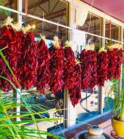 Red Chile Ristras